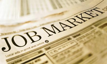 #Job : on recrute de plus en plus de profils  #Opensource