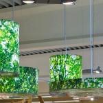 L'éclairage intelligent a tout pour plaire au retail