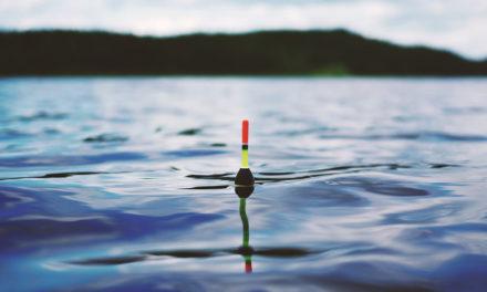 #Phishing : la pêche est bonne pour Bercy