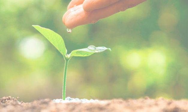 A propósito de un sistema de gestión ambiental (SGA)