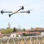 Les vins mûrissent leur transition numérique